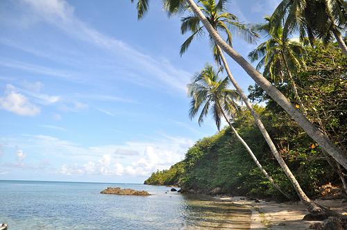 Providencia Island; photo c/o Google Images