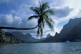 Cook's Bay, Moorea Island, Tahiti